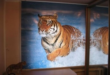 Фото ролл-шторы